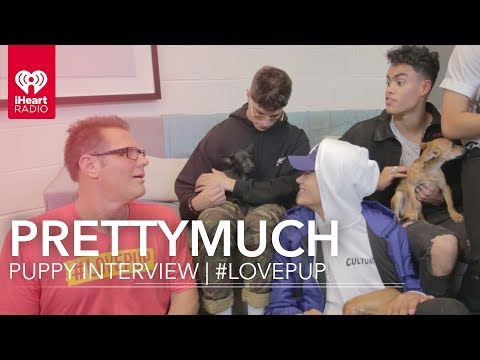 PRETTYMUCH Puppy Interview | #LovePup with Johnjay