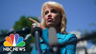 Kellyanne Conway To Reporter: 'What's Your Ethnicity?' While Defending Trump Comments | NBC News