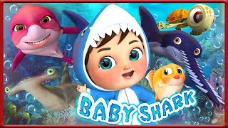 Baby Shark , Baby Shark original , Baby Shark Fast , Baby Shark Doo Doo Doo Doo , Baby Shark Song