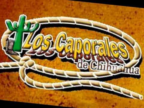 Te necesito Amor Los Caporales De Chihuahua