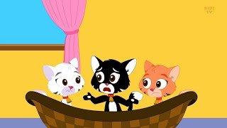 Comptines et Chansons Pour Enfants Collection | comptines anglaises | Trois petits chatons