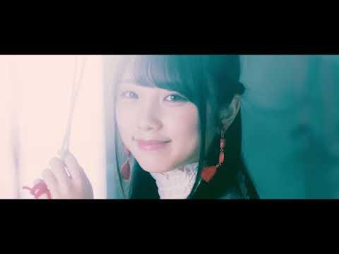 Thinking Dogs 『愛は奇跡じゃない』MV Short Ver.