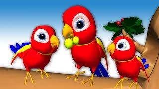 Chitti Chilakamma | Burru Pitta | Birds - 3D Animation Telugu Rhymes For children Baby Songs