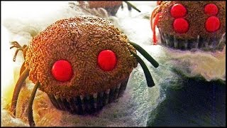 Fuzzy Tarantula Cupcakes ✷クモさんのカップケーキ