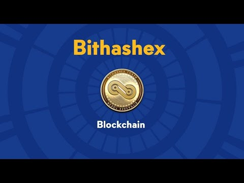 Gain Financial Freedom - Invest in Bhax Token | Bithashex Cryptocurrency