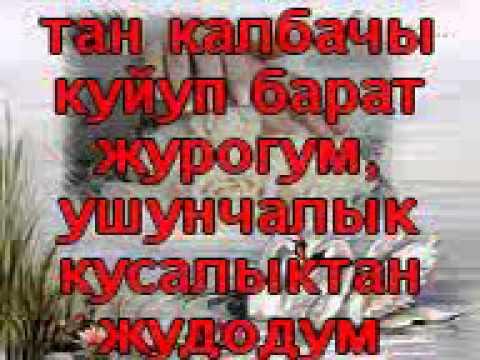 Кыргызча Лирикалар Суйуу