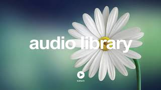 Magnum - Rondo Brothers | No Copyright Music YouTube - Free Audio Library