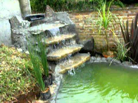 Como hacer un estanque facil y barato01 avi musica movil for Estanque casero para peces