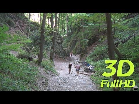 [3DHD] Walking Tour: Ciasne Skalki Gorge, Ojcow, Poland / Spacer: Wąwóz Ciasne Skałki, Ojców, Polska