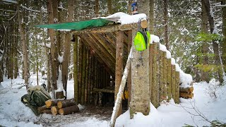 Building a Fort in the Woods-OVERNIGHT BUSHCRAFT CAMP in the Snow w/ My Dog