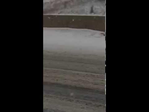 Што прави каубоец од Мичиген на снежна бура?