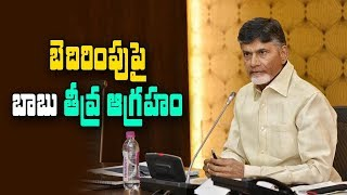 CM Chandrababu responds on Vasantha's Threat Call..
