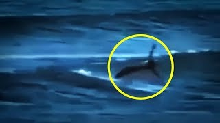 5 Mermaids Caught On Camera & Spotted In Real Life! #2
