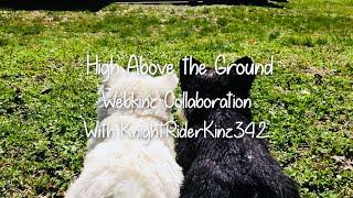 High Above the Ground Webkinz Collaboration (feat. KnightRiderKinz342)