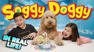 SOGGY DOGGY GAME CHALLENGE IN REAL LIFE!!! Loser Gives Chloe a Bath!