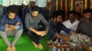 Jr NTR and Kalyan Ram Pay Tribute to NTR..