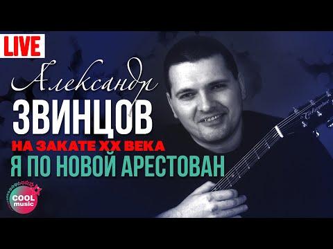 Александр Звинцов   На закате XX века 04  Я по новой арестован