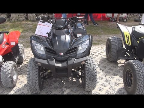 Kymco MXU 250 On Road ATV Exterior and Interior in 3D