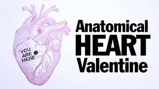 Anatomical Heart Valentines, ThreadBanger How To