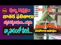 అదృష్టమే,పుబ్బనక్షత్రంచిలుక జోస్యం| PUBBA NAKSHATRA2021 |CHILUKA JOSYAM |PARROT ASTROLOGY|SHUBHAM TV