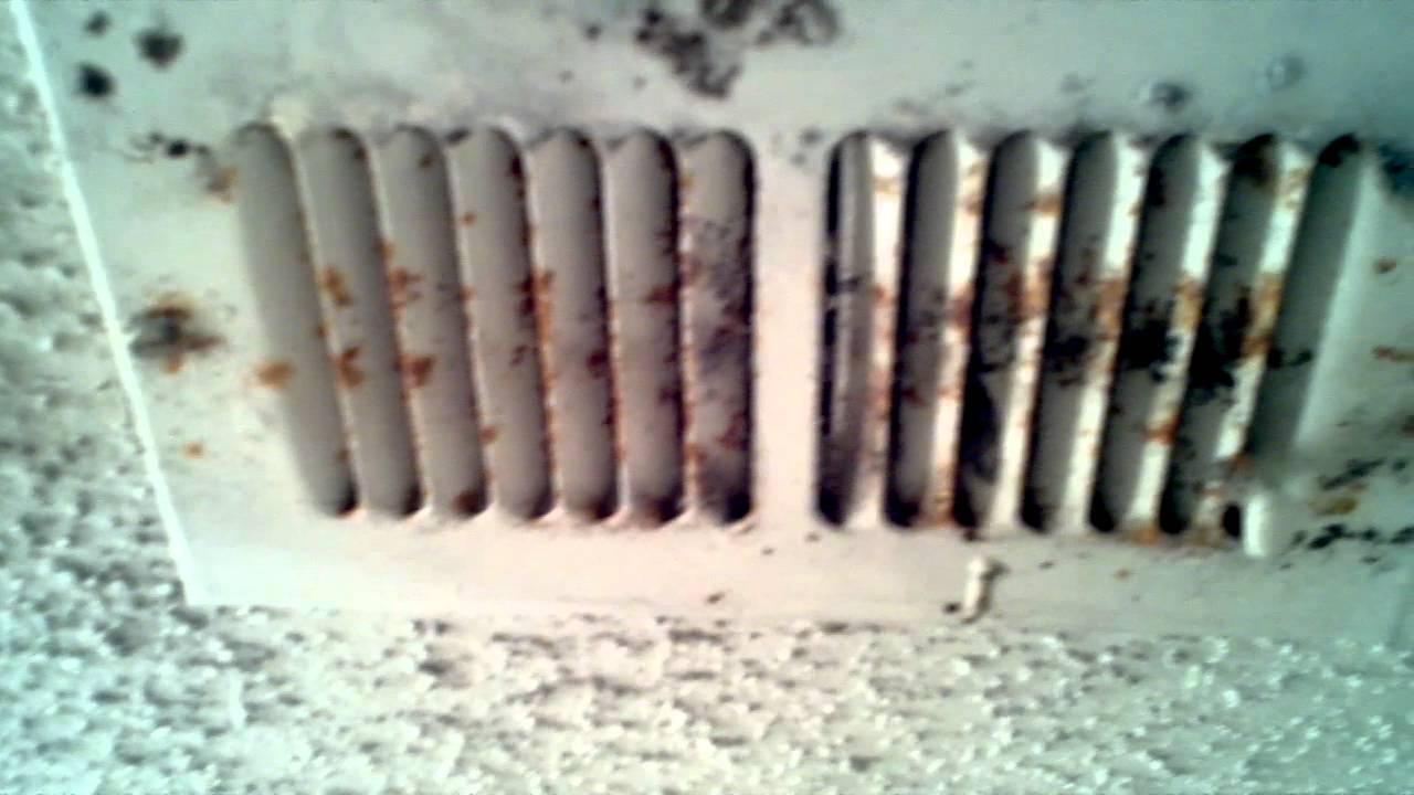 Black Mold Vent First View Youtube