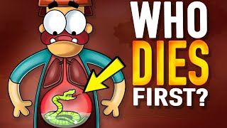 What if You Swallowed the Most Venomous Snake Ever?