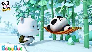 Ai mới là gấu trúc Kiki   Hoạt hình hay cho bé   Hoạt hình gấu trúc   BabyBus vietnamese