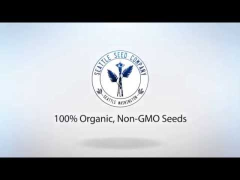 Seattle Seed Co. Intro