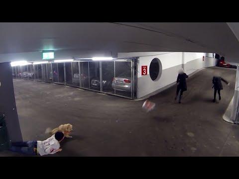 Top Killer Dog Scare Prank