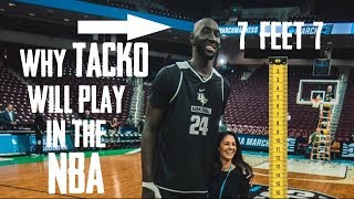 Why Tacko Fall is Actually REALLY GOOD (Statistical Proof)