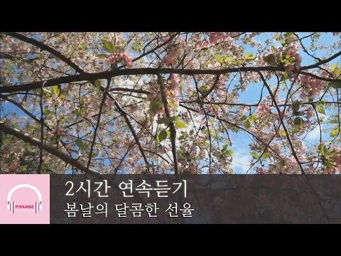 2시간 연속 듣기 | 봄날의 달콤한 선율 | 잔잔한 피아노곡 모음 | 릴렉스 피아노 | 뉴에이지 연주곡