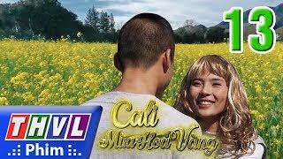 THVL   Cali mùa hoa vàng - Tập 13