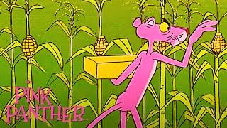 Ružový panter - Kukurica