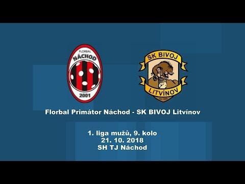 muži, 1.liga, Náchod - Litvínov