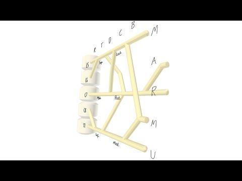 Brachial Plexus Subway Map.Brachial Plexus Mnemonic Medical Mindmaps For Usmle Step 1 Brachial