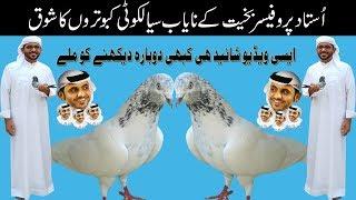 Ustad mustafa of Karachi ki chat se high flying pigeon or
