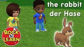 Learn German for Kids - Food, Activities & Animals