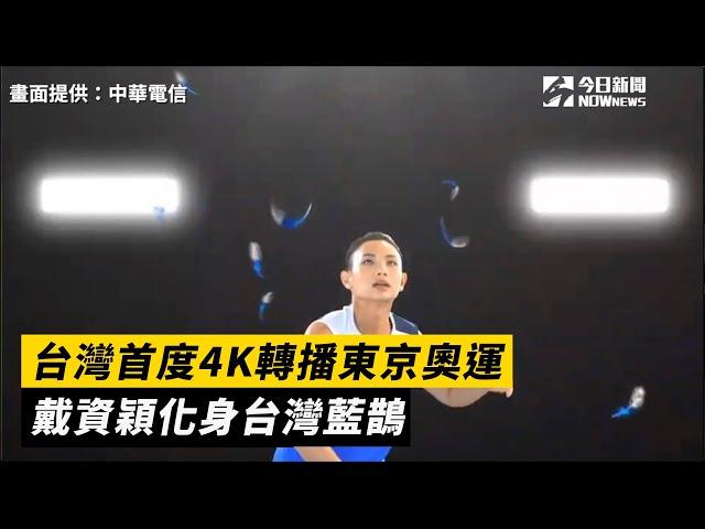 4K轉播東京奧運 小戴化身台灣藍鵲