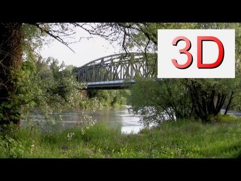 3D Video: River & Forest Relaxation #1