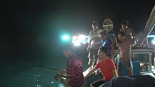 Tin Tức 24h: Đặc sắc nghề câu mực đêm ở Nhơn Lý, Bình Định