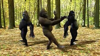 gorilla crew dancing to alex jones
