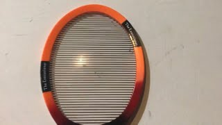 The Executioner 【REVIEW/2】 Fly Swat Wasp Bug Mosquito Swatter Zapper