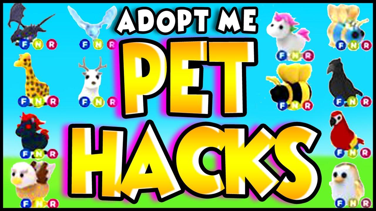 Adopt Me Pet Ages Anna Blog