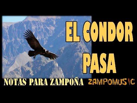 El cóndor pasa (tutorial notas para zampoña, audio off)