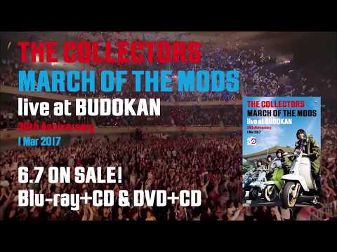 『THE COLLECTORS live at BUDOKAN』トレーラー