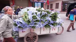 """Chợ Hoa chiều 30 Tết  Đại Hạ Giá """"mua nhanh bán vội"""" cho mau hết để về nhà Ăn Tết"""