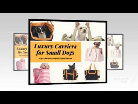 Luxury Carriers for Small Dogs || Bloomingtails Dog Boutique