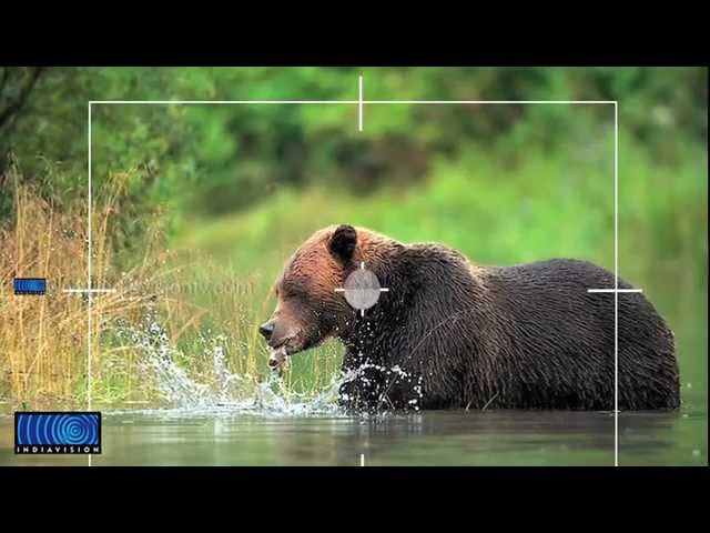 wildlife photography expo start at Cochin