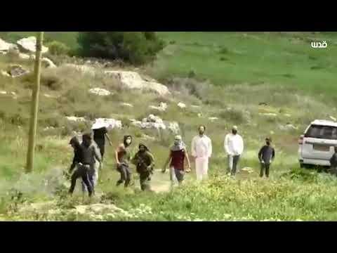 مستوطنون ملثمون يهاجمون مسناً فلسطينياً بالعصي والحجاري