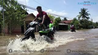 PARAH!!! Pati Utara Diterjang Banjir, Lebih dari 3 Ribu Rumah Terendam
